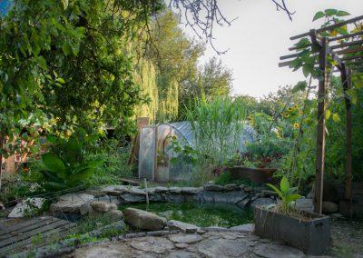 Jardin-du-Tilleul-5912